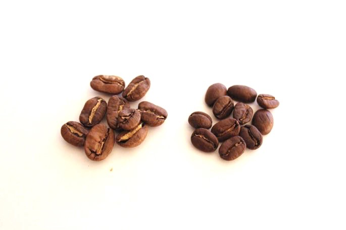 GUATEMALA(エスペランサ農園)<br />
